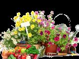 Средства для сада и огорода